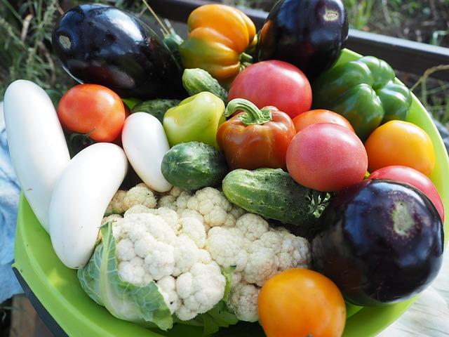 вегетарианство путь к здоровью